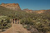 Mountainbike-Apache Trail, Apache Trail Arizona-USA