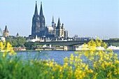 View at Cologne Cathedral and Deutzer bridge at the river Rhine, Cologne, North Rhine-Westphalia, Germany, Europe