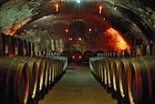 Barrels at the wine cellar of castle Johannisberg, Geisenheim, Rheingau, Hesse, Germany, Europe