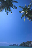 View at ocean, rocks and palm trees under blue sky, Ko Phi Phi Le, Thailand, Pacific ocean, Asia