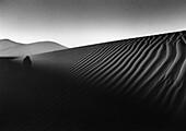 Sandshadows, Grand Erg Occidental Sahara, Algeria