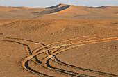 Desert trail, Sahara, Algerien, nahe Timimoun, Algerische Sahara Afrika, Landschaft, Sandduenen, Sandduene, Sand, Wueste, Wuestenlandschaft, Spur, Spuren, Weg, verlassen, Reifenspuren, Buchcover