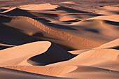 Grand Erg Occidental, Algerien, algerische Sahara, Duenenlandschaften.3 Afrika, Wueste, Duene, Sand English: Algeria, Algerian Sahara, Grand Erg Occidental