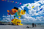 7 International Kite festival, Norderney, East Frisian Islands, East Frisia, Lower Saxony, Germany