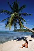 Strand, Kokospalmen, Dominikanische Republik Karibik