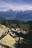 View from Niederhorn towards lake Thun, Eiger, Moench and Jungfrau, Bernese Oberland, Switzerland