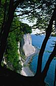 Chalk coast, Jasmund, National park Jasmund Ruegen, Ruegen Island,  Mecklenburg-Vorpommern, Germany