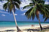 Palmenstrand Las Terrenas, Dominikanische Republik Karibik, Amerika