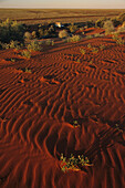 Australia, ripples in red sand dune in outback South Australia