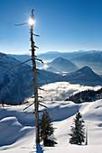 Winter Landscape, Skiing Region Altaussee Steiermark, Austria
