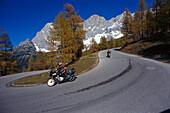 Mountainbiking, Ramsau, Steiermark Austria
