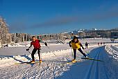 Cross-country skiing, Ramsau Styria, Austria
