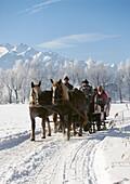 Pferdeschlitten auf verschneiter Strasse im Sonnenlicht