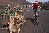 Mountainbiking beside Camelcaravan, Lanzarote Canary Islands