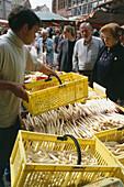 Ecological asparagus cultivation , Market stall, Linden, Hanover