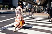 Geisha, Tokyo Japan