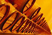 Storage, Wine barrels, Bodega Chivite Navarra, Spain