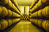Storage room for wine barrels, Bodega Ochoa, Navarra, Spain, Europe