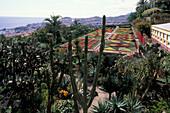 Botanical Garden upon the city, Jardim Botanico, Funchal, Madeira, Portugal