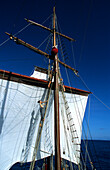 Sailors climbing the rigging, Traditional Sailing Ship, Ocean, French Polynesia, South Pacific
