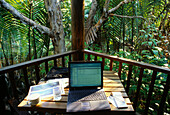 Working in the Tropicals, Cairns, Tropical North, Queensland, Australia