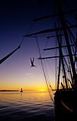 Man jumping from the mast of a sailing ship at sunset, Bora Bora, Polynesia