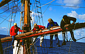 Sailors on Mast, Work, Traditional Sailing Ship, Tonga Open Ocean, South Pacific, PR