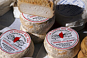 Goats cheese, Delicacy, Corsica, France