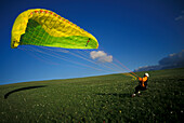 Man with paraglider on a meadow, Abruzzi, Marche, Italy, Europe
