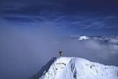 Alpinist on summit, Western Alps, The Alps, Europe