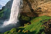Waterfall with irish moos, Iceland, Skandinavia