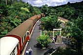 Nostalgic train at a station, Kuranda, Queensland Australia