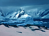 Pink snow caused by bacteria in front of snow covered mountains, Graham Land, Antarctic Peninsula Antarctica