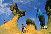 Geological formations Yehliu, Yehliu, Taipei County Taiwan, Asia