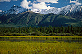 Mt. Decoett near, Haines Junction Yukon, Canada