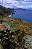 Mediterrane Flora und Meeresblick auf Lipari, Sizilien, Italien