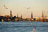Harbour and St. Michaelis Church in background, Hamburg, Germany