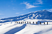 Large group of skialpinists ascending a snowy mountain, Straetscherhorn, Safiental, Grisons, Graubuenden, Switzerland, Alps