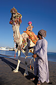 Camel Riding, Beach at Giftun Village, Hurghada, Red Sea, Egypt