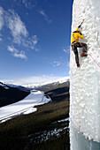 Male ice climber ascending ice, Curtain Call, British Columbia, Canada