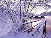 Snow covered landscape, Kochelsee, Upper Bavaria, Germany