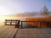 Jetty in early morning fog, Osterseen, Upper Bavaria, Germany