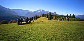 Hiker sitting on bench, Graseck, View to Wetterstein and Zugspitze, Alpspitze, Upper Bavaria, Germany, Alpspitze