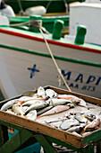 Fish, Mandraki harbour, Kos-Town, Kos, Greece
