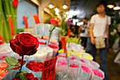 flower market, Wenhua Guangshan, near Shaanxi Nanlu, flowers, flower market, floral, rose, plant, old, Rose, red roses