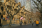 French Concession, Winter, plane tree avenue in winter time
