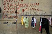 Graffiti,Telefonnummern, Graffitti, Wäschestange, washing line