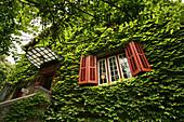 Zhou Enlai, residence ,ehemaliges Wohnhaus, former residence, Chou En Lai museum, exhibition, Ausstellung, Eingang, Weinberankte Hauswand, green creeper