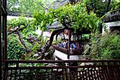 Yu Garden, Yu Yuan Garden, Ming Dynasty, Nanshi