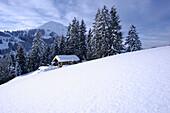 Alpine Skihütte, Ferienhütte im Schnee, mit den Hohen Salve im Hintergrund, Brixen im Thale, Alpen Tirol, Österreich